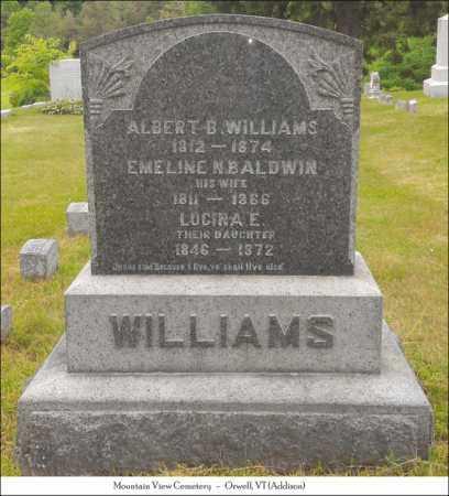 BALDWIN WILLILAMS, EMELINE N. - Addison County, Vermont | EMELINE N. BALDWIN WILLILAMS - Vermont Gravestone Photos