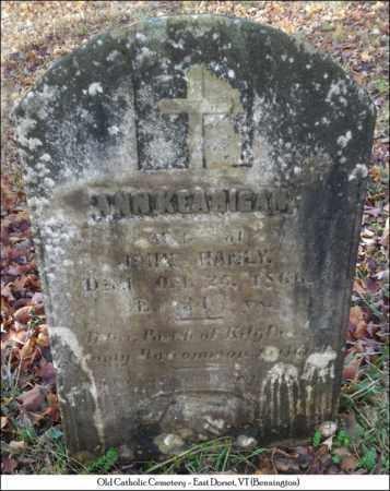 HANLY, ANN - Bennington County, Vermont   ANN HANLY - Vermont Gravestone Photos