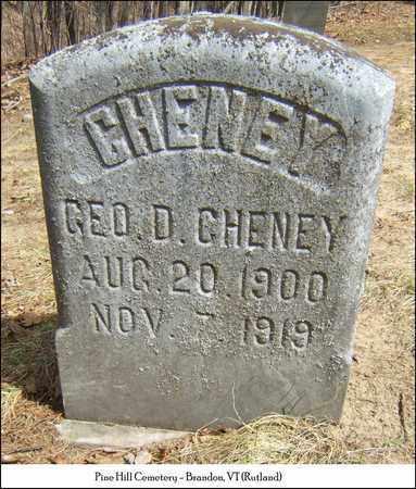 CHENEY, GEORGE D. - Rutland County, Vermont   GEORGE D. CHENEY - Vermont Gravestone Photos