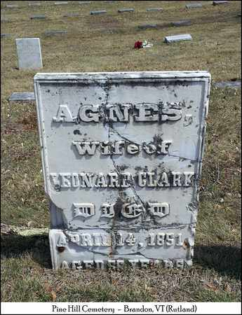 CLARK, AGNES - Rutland County, Vermont | AGNES CLARK - Vermont Gravestone Photos
