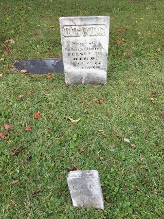 PELSUE, LEVI G. - Rutland County, Vermont | LEVI G. PELSUE - Vermont Gravestone Photos