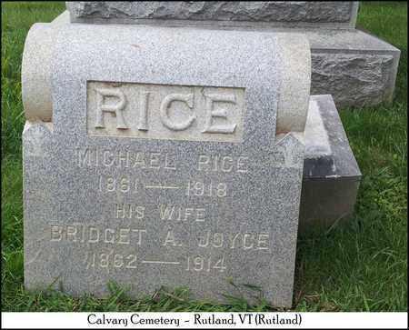 JOYCE RICE, BRIDGET A. - Rutland County, Vermont | BRIDGET A. JOYCE RICE - Vermont Gravestone Photos