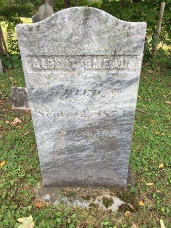 SMEAD, ALBERT - Rutland County, Vermont | ALBERT SMEAD - Vermont Gravestone Photos