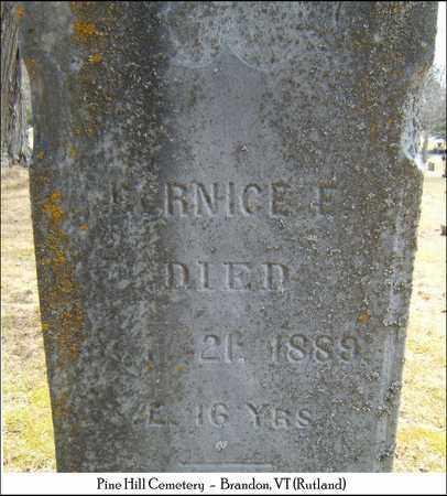 TICE, BERNICE E. - Rutland County, Vermont | BERNICE E. TICE - Vermont Gravestone Photos