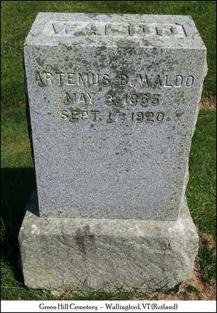 WALDO, ARTEMUS B. - Rutland County, Vermont | ARTEMUS B. WALDO - Vermont Gravestone Photos