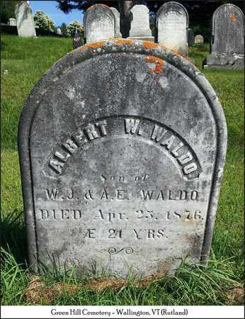 WALDO, ALBERT W. - Rutland County, Vermont   ALBERT W. WALDO - Vermont Gravestone Photos