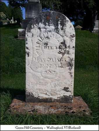 ANDRUS WALDO, ANNA ELIZA - Rutland County, Vermont   ANNA ELIZA ANDRUS WALDO - Vermont Gravestone Photos
