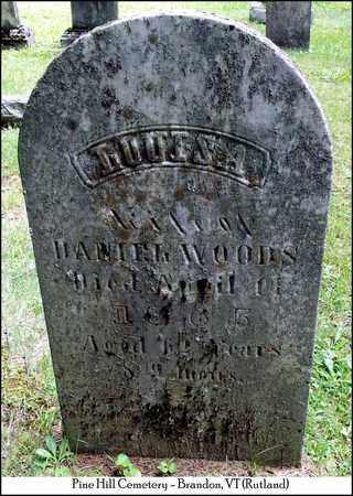 WOODS, LOUISA - Rutland County, Vermont | LOUISA WOODS - Vermont Gravestone Photos