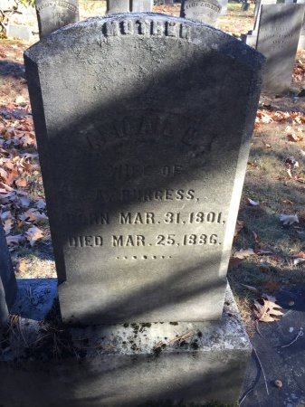 GOODRIDGE BURGESS, ABIGAIL HALE - Windham County, Vermont | ABIGAIL HALE GOODRIDGE BURGESS - Vermont Gravestone Photos