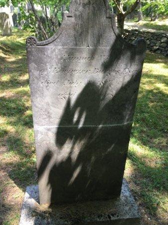 BURGESS, HANNAH - Windham County, Vermont | HANNAH BURGESS - Vermont Gravestone Photos
