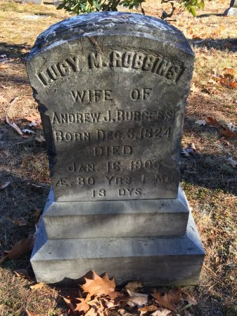 ROBBINS BURGESS, LUCY M. - Windham County, Vermont | LUCY M. ROBBINS BURGESS - Vermont Gravestone Photos