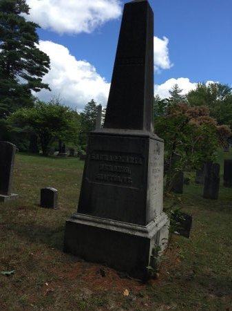 BURGESS MONUMENT, - - Windham County, Vermont | - BURGESS MONUMENT - Vermont Gravestone Photos