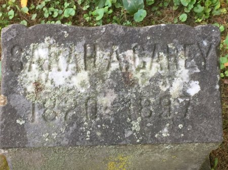 CAREY, SARAH ANN - Windham County, Vermont | SARAH ANN CAREY - Vermont Gravestone Photos