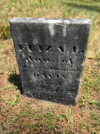 DAVIS, ELIZA L. - Windham County, Vermont   ELIZA L. DAVIS - Vermont Gravestone Photos