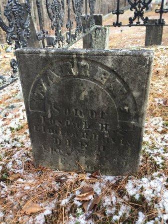DAVIS, WARREN - Windham County, Vermont | WARREN DAVIS - Vermont Gravestone Photos