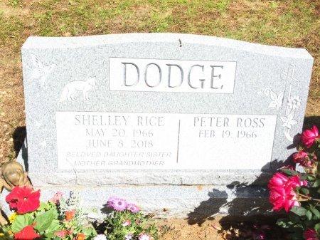 DODGE, SHELLEY MAUREEN - Windham County, Vermont | SHELLEY MAUREEN DODGE - Vermont Gravestone Photos