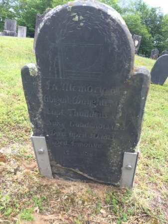 GOODNOW, ABIGAIL - Windham County, Vermont | ABIGAIL GOODNOW - Vermont Gravestone Photos