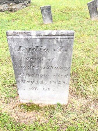 GOODNOW, LYDIA AUGUSTUS - Windham County, Vermont | LYDIA AUGUSTUS GOODNOW - Vermont Gravestone Photos
