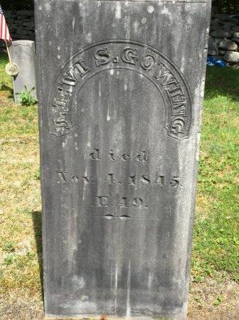 GOWING, LEVI SABIN - Windham County, Vermont   LEVI SABIN GOWING - Vermont Gravestone Photos