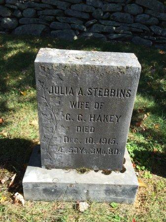 STEBBINS HAKEY, JULIA ANN - Windham County, Vermont | JULIA ANN STEBBINS HAKEY - Vermont Gravestone Photos