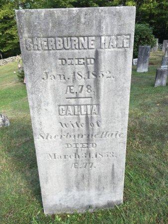 HALE, CALLIA - Windham County, Vermont | CALLIA HALE - Vermont Gravestone Photos