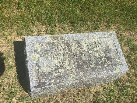 JOHNSON, MARY AGNES - Windham County, Vermont | MARY AGNES JOHNSON - Vermont Gravestone Photos