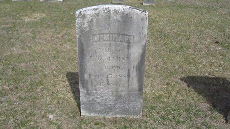 FIELD MARSH, JEMIMA F. - Windham County, Vermont | JEMIMA F. FIELD MARSH - Vermont Gravestone Photos