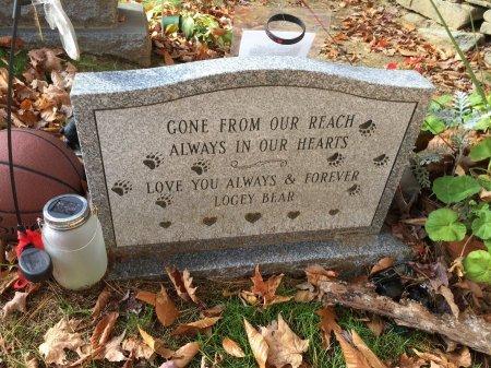 SPAULDING, LOGAN PAUL #2 - Windham County, Vermont | LOGAN PAUL #2 SPAULDING - Vermont Gravestone Photos