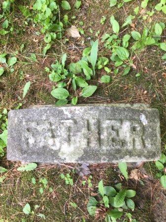 STEBBINS, ALONZO - Windham County, Vermont   ALONZO STEBBINS - Vermont Gravestone Photos