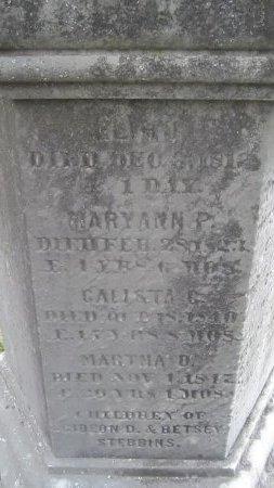 STEBBINS, ELIHU - Windham County, Vermont   ELIHU STEBBINS - Vermont Gravestone Photos