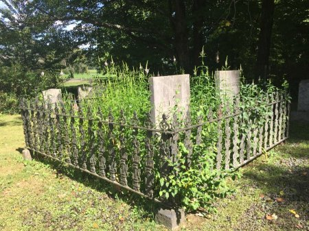 STEBBINS ENCLOSURE/PLOT, - - Windham County, Vermont | - STEBBINS ENCLOSURE/PLOT - Vermont Gravestone Photos