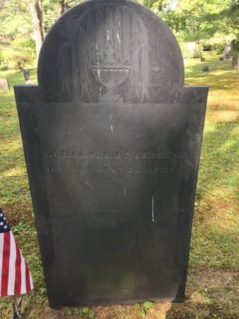 STEBBINS, LT. ELIAKIM - Windham County, Vermont | LT. ELIAKIM STEBBINS - Vermont Gravestone Photos
