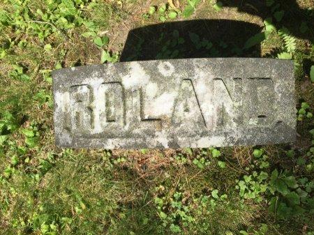 STEBBINS, ROLAND ALONZO - Windham County, Vermont   ROLAND ALONZO STEBBINS - Vermont Gravestone Photos