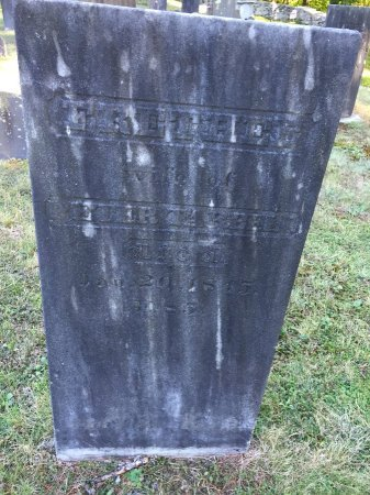 TARBELL, FRETHEE - Windham County, Vermont   FRETHEE TARBELL - Vermont Gravestone Photos