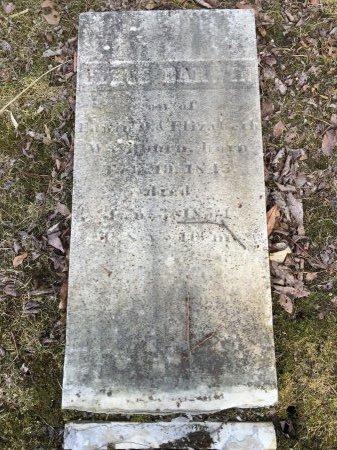 WASHBURN, CYRUS DARWIN - Windham County, Vermont | CYRUS DARWIN WASHBURN - Vermont Gravestone Photos