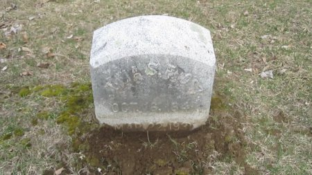 FROST WHITHED, JULIA SOPHIA - Windham County, Vermont | JULIA SOPHIA FROST WHITHED - Vermont Gravestone Photos
