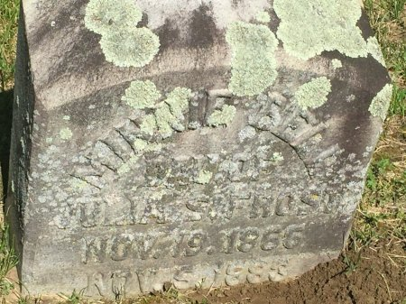 WHITHED, MINNIE BELL - Windham County, Vermont | MINNIE BELL WHITHED - Vermont Gravestone Photos