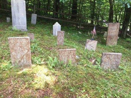 BRIGGS, LUCY AMELIA - Windsor County, Vermont | LUCY AMELIA BRIGGS - Vermont Gravestone Photos