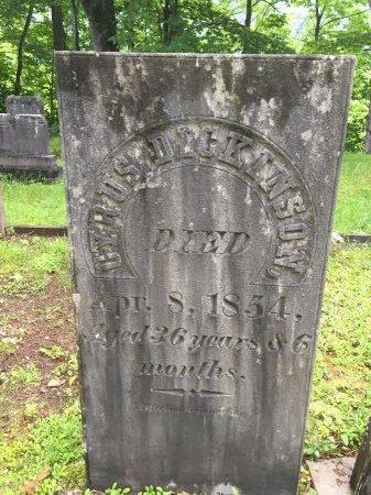DICKINSON, CYRUS - Windsor County, Vermont | CYRUS DICKINSON - Vermont Gravestone Photos