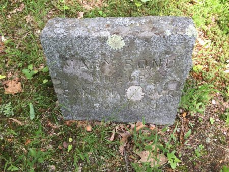 PIERCE, MARY ELIZABETH - Windsor County, Vermont | MARY ELIZABETH PIERCE - Vermont Gravestone Photos