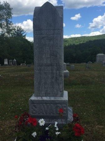 SAVAGE, CLARENCE - Windsor County, Vermont | CLARENCE SAVAGE - Vermont Gravestone Photos