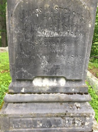 STEARNS, JAMES MADISON - Windsor County, Vermont | JAMES MADISON STEARNS - Vermont Gravestone Photos
