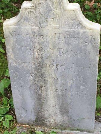 WEAVER, SUSANNA H. - Windsor County, Vermont | SUSANNA H. WEAVER - Vermont Gravestone Photos
